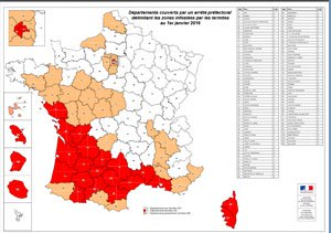 Carte infestation termites LANDES